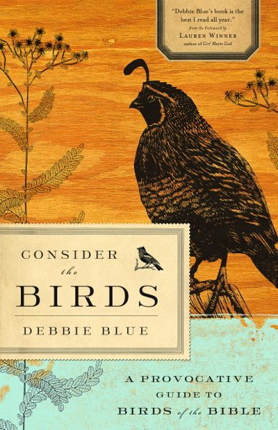 Consider the Birds cover illustration by Jim Larson (Abingdon Press)