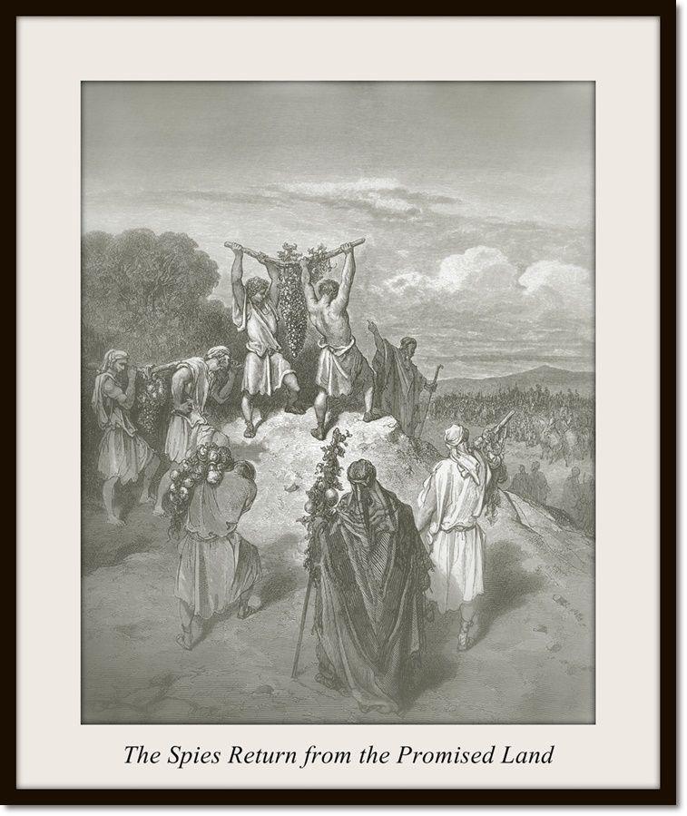 Pin von Inge Held auf DoréBibel Bibel