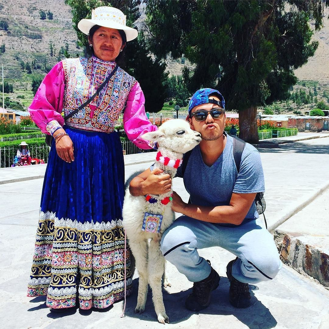 All you need is LOVE #alpaca #peru #colca #babyalpaca #viajando #backpacking #backpacker #aventurasdiraheta #aventura #southamerica #suramerica #love #kiss #animal #viajero #beso #florsita #amor by irahetad