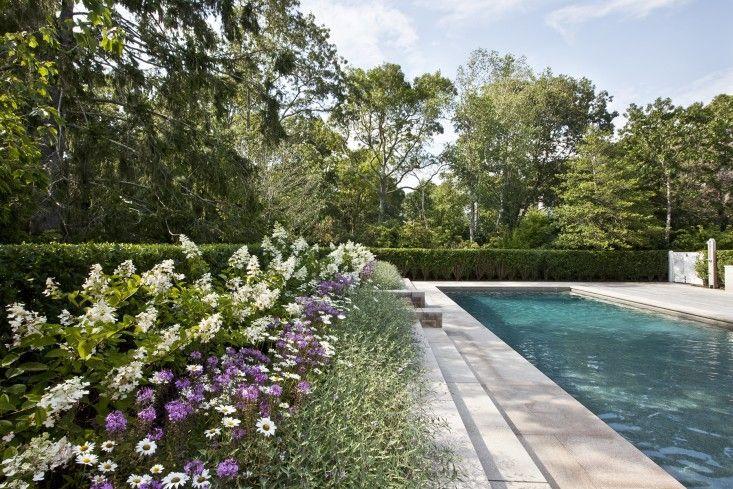 Landscape Architect Visit A Very American Garden On Cape Cod