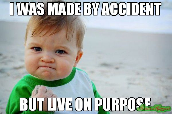 I Was Made By Accident But Live On Purpose Meme New Year Quotes Funny Hilarious Funny New Years Memes Funny Memes Sarcastic