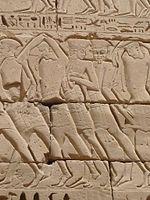 """Os Peleset, conhecidos por seu nome bíblico de Filisteus, eram um dos grupos entre os chamados """"povos do mar"""", que invadiram o oriente próximo durante o século XII a.C."""