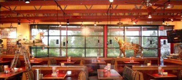 Red Robin Warrenville Il Restaurant Chose Solar Roller