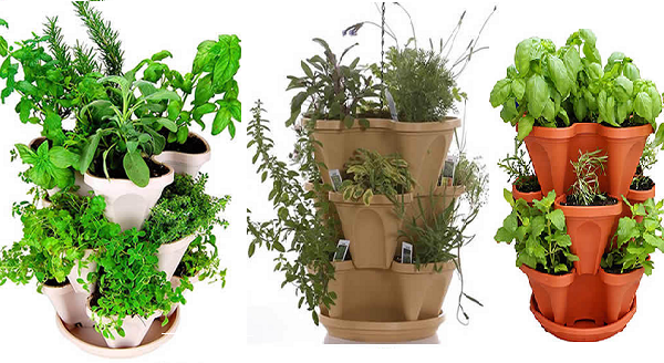 Organic Indoor Herb Garden Planning to start an organic indoor herb garden read this quick a quick guide to start an organic indoor herb garden workwithnaturefo