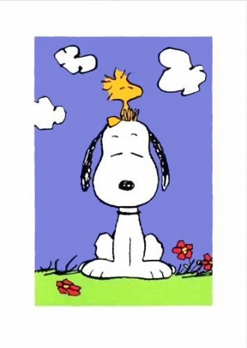 Snoopy Woodstock   Charlie Brown and the Peanuts Gang   Peanuts ...