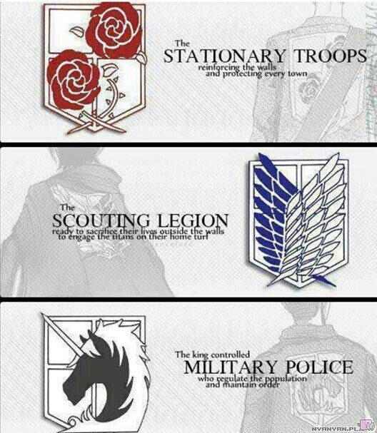 AOT || Stationary Troops-Scounting Legion-Military Police-Whom would you choose? ^ ^ | Attack on titan, Attack on titan anime, Shingeki no kyojin
