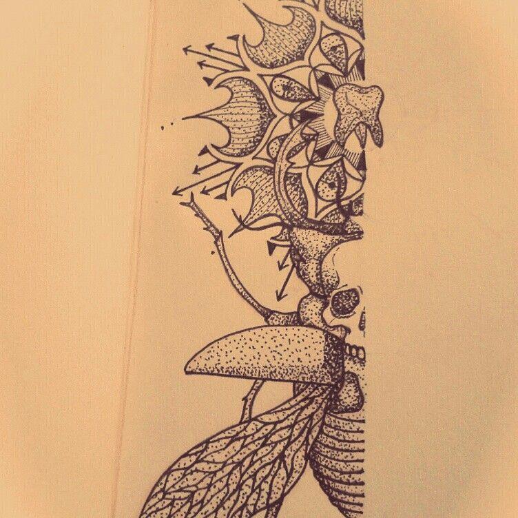 #myart #ink #tattoo #dotwork #ink #arte #draw #sketchbook #desenho #skull #beetle #blackwork #caveira #besouro #mandala