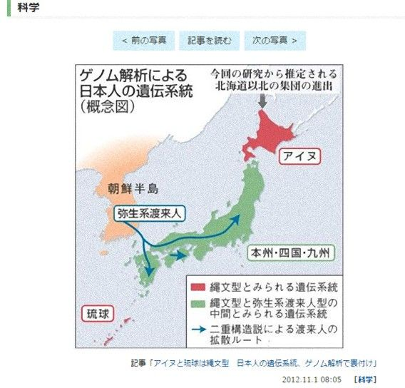 日本人の遺伝的系統がゲノム解析で判明 本州 四国 九州は縄文人と