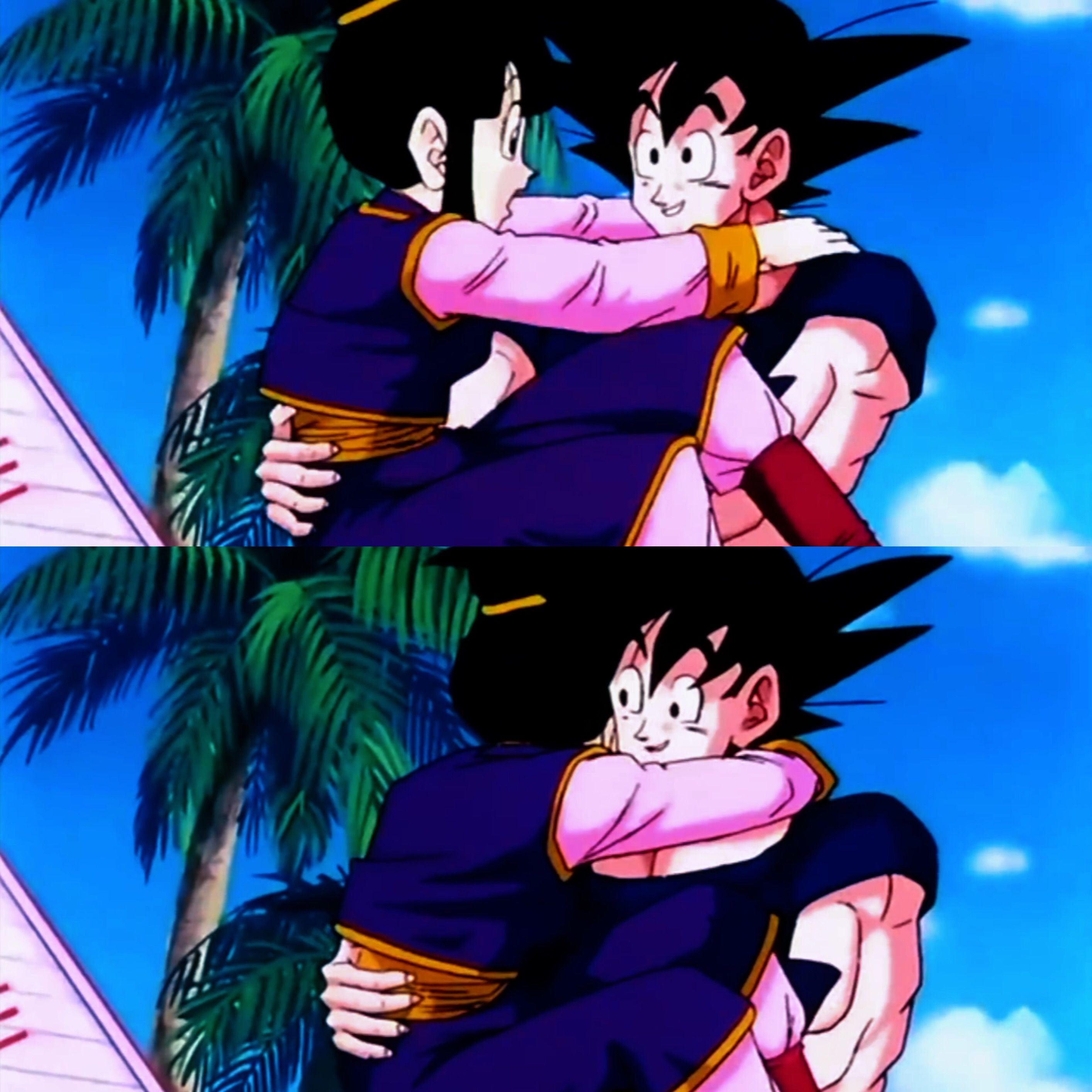Pin On Goku X Chichi