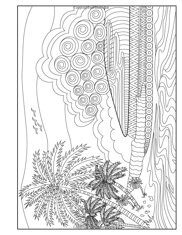 Amazon Adult Coloring Book Island Dreams Vacation Summer And Beach