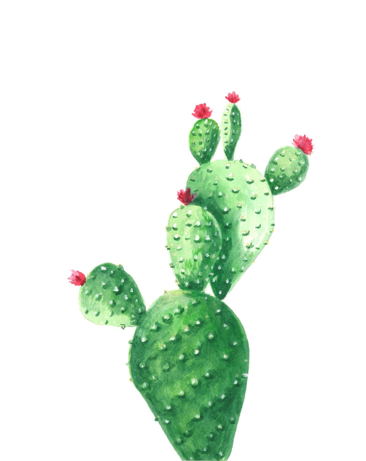 Cactus Watercolor Print Cactus Watercolor Painting By Hgrahamandco