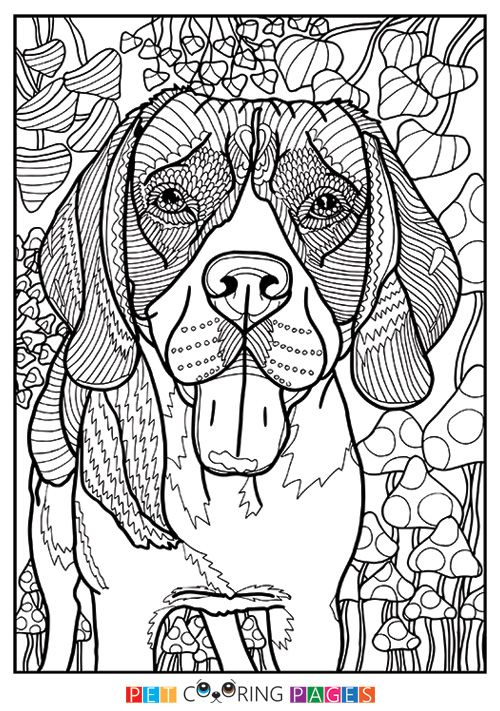 Free Printable Beagle Coloring Page Available For Download Simple