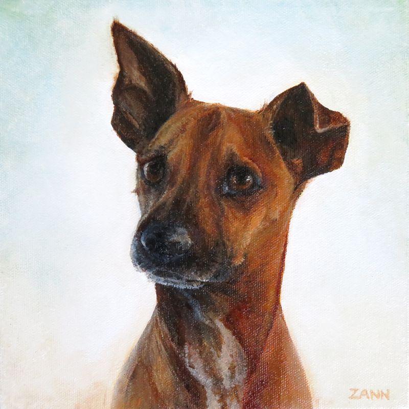 12 x 12 chihuahua mix dog portrait by zann hemphill
