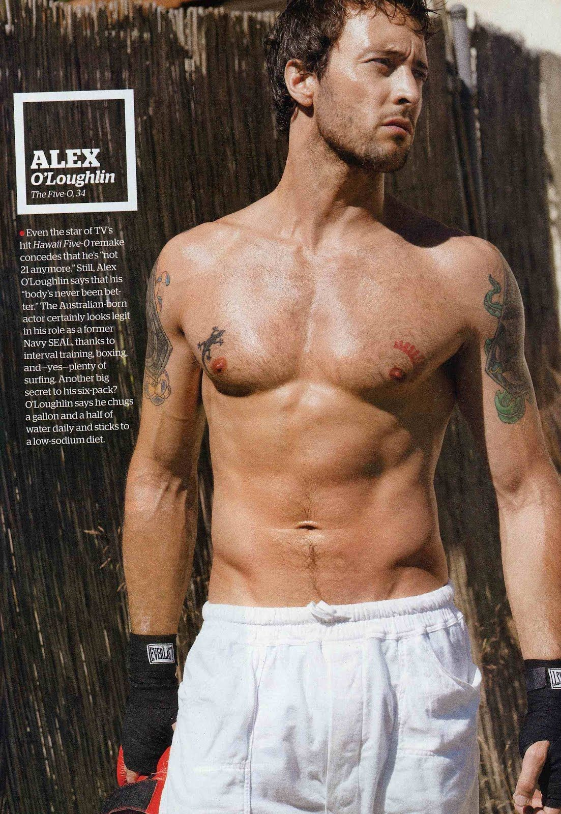Sexiest Hollywood Male Actors  Shirtless Hollywood Hunks -8623