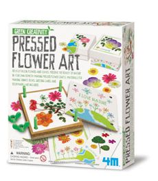 PRESSED FLOWERS (Green Creativity Kit).
