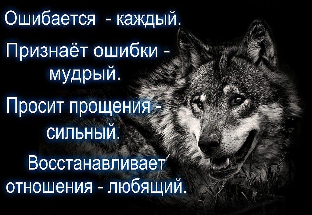 Pin by Marina Vedernikova on | Smart quotes wisdom, Quote ...