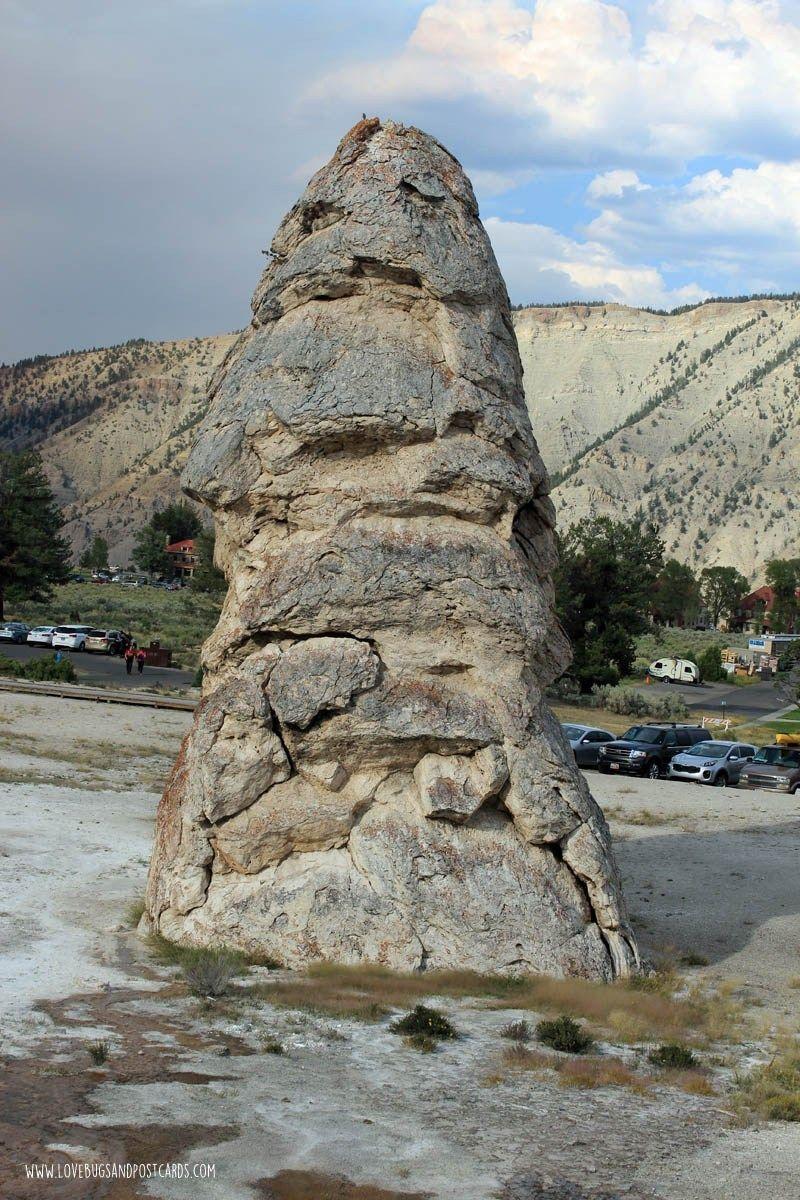 Mammoth Hot Springs Yellowstone National Park Yellowstone