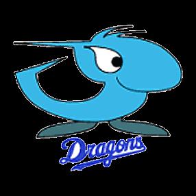 Chunichi Dragons Logo NPB | NPB | Chunichi dragons, Nippon