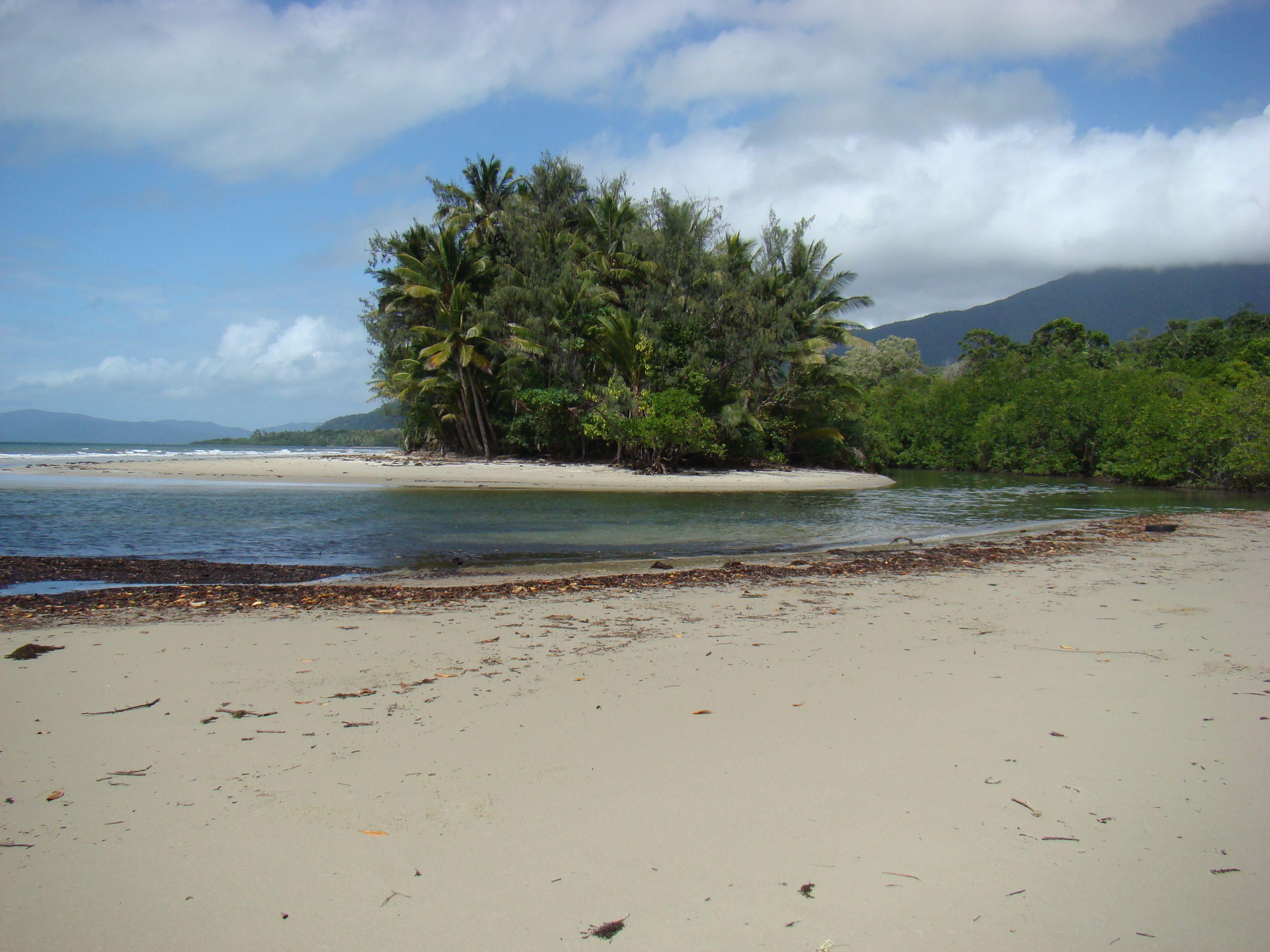 Cape Tribulation // Australien