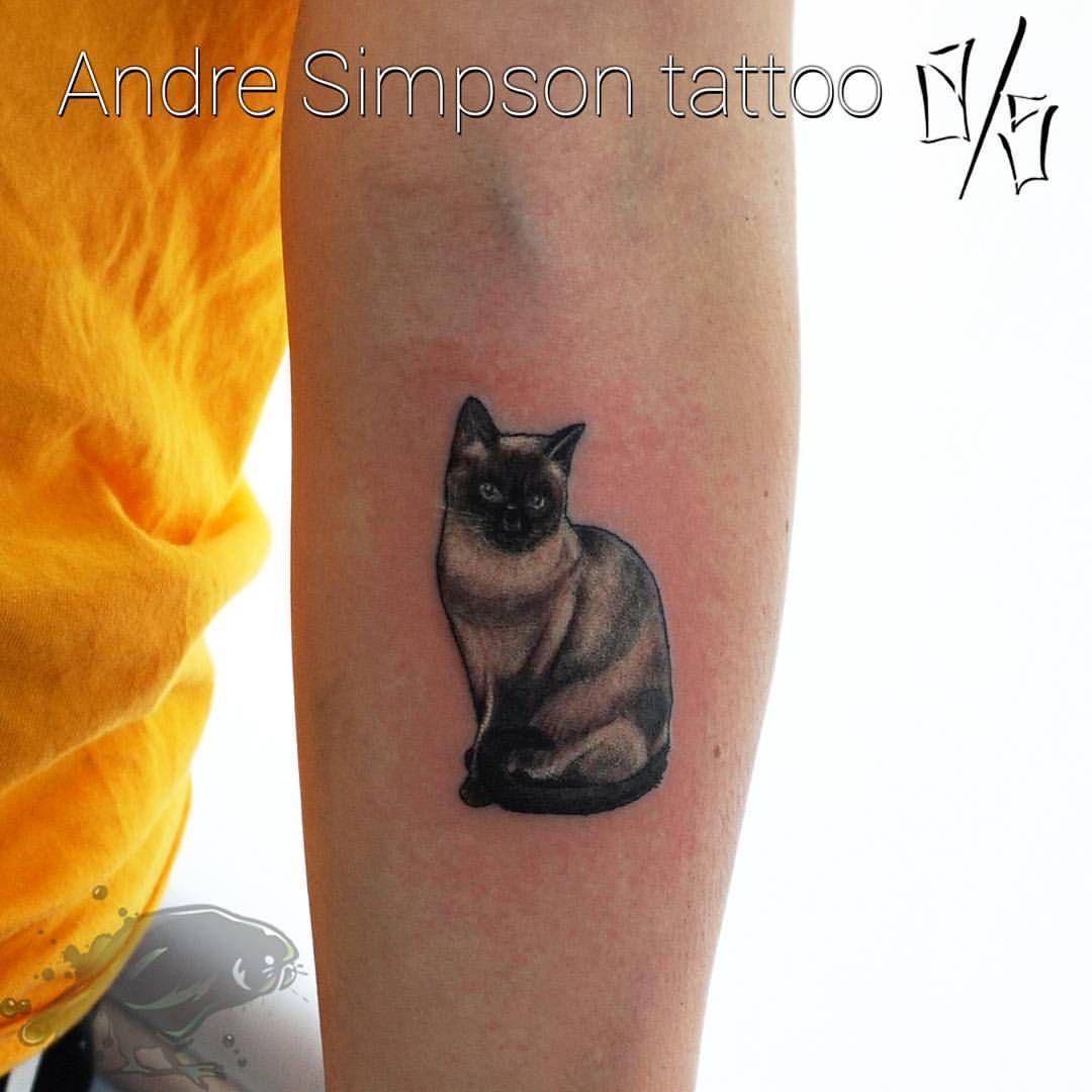Saimese Cat Tattooed On The Forearm Thanks Lucy Cattattoo Cattoo Cattoos Siamesecat Siamesecattattoo Tattoo T Cat Tattoo Small Pet Websites Cat Tattoo