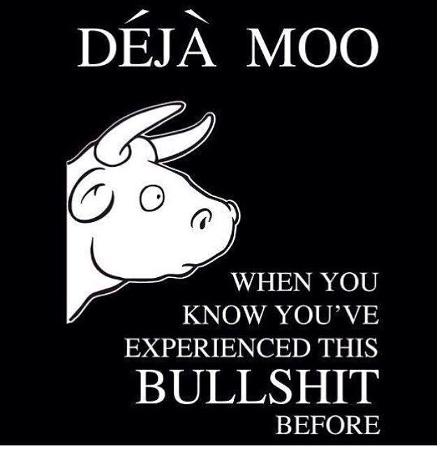 Déjà moo | Funny quotes, Haha funny, Words