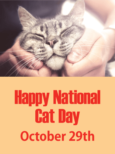 Happy National Cat Day Card Birthday Greeting Cards By Davia National Cat Day Cat Day Cats