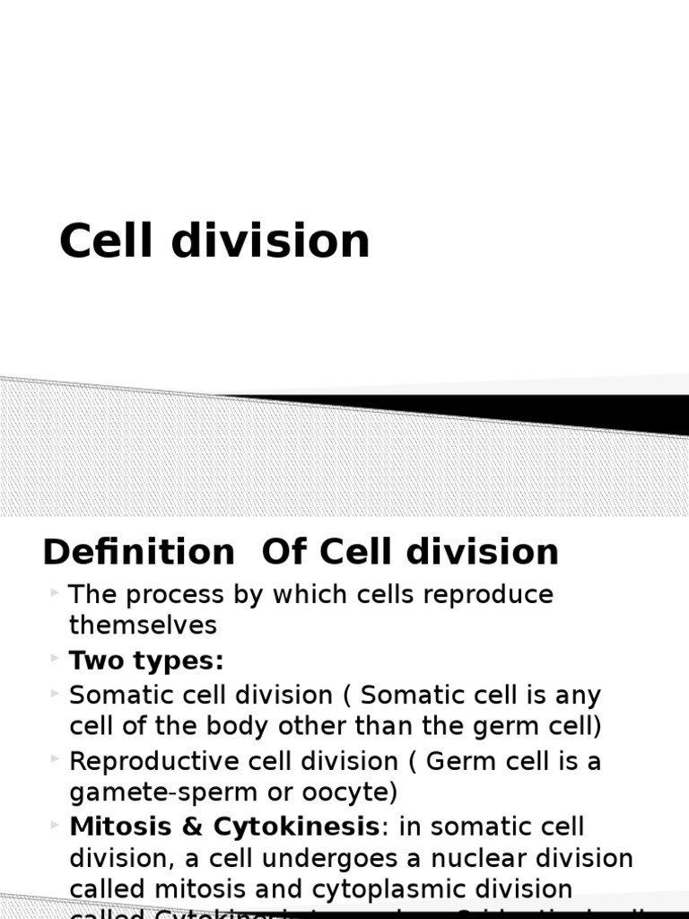 Cell Reproduction Worksheet Answers Cell Division Meiosis ...