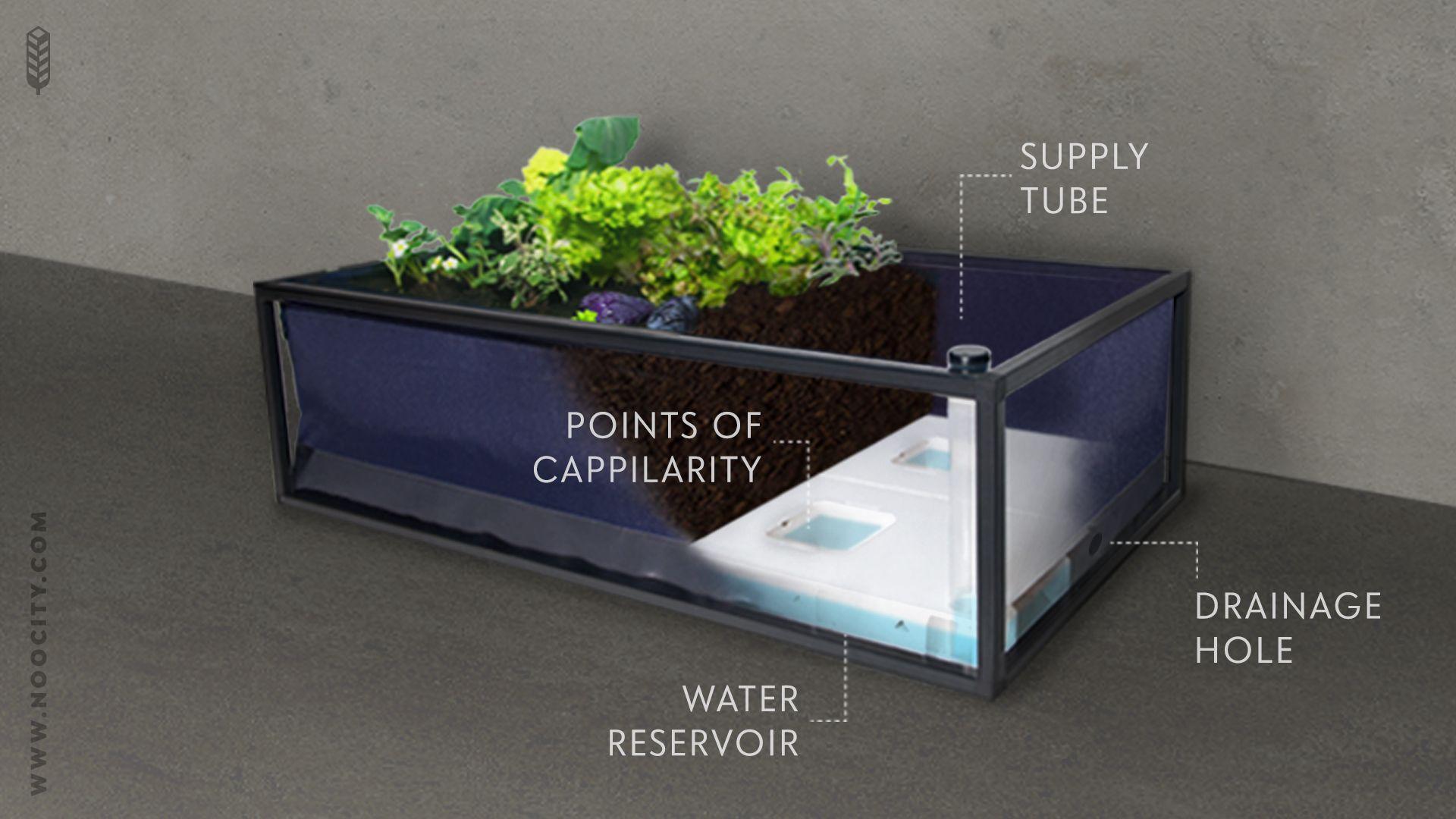 Noocity Growbed - Ultimate Urban Gardening System | Indiegogo