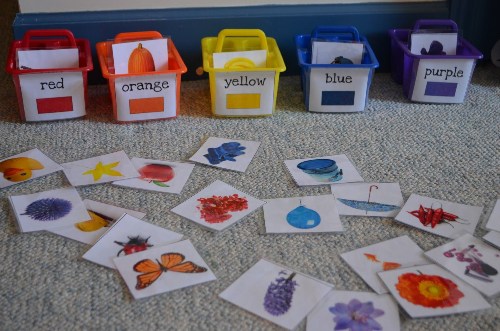 Sorting Colors Get Containers From The Dollar Store