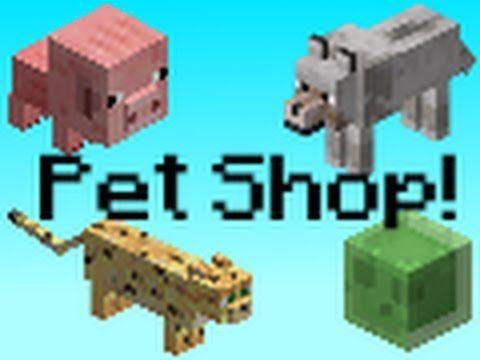 Minecraft Pet Shop Pet Shop Pets Minecraft