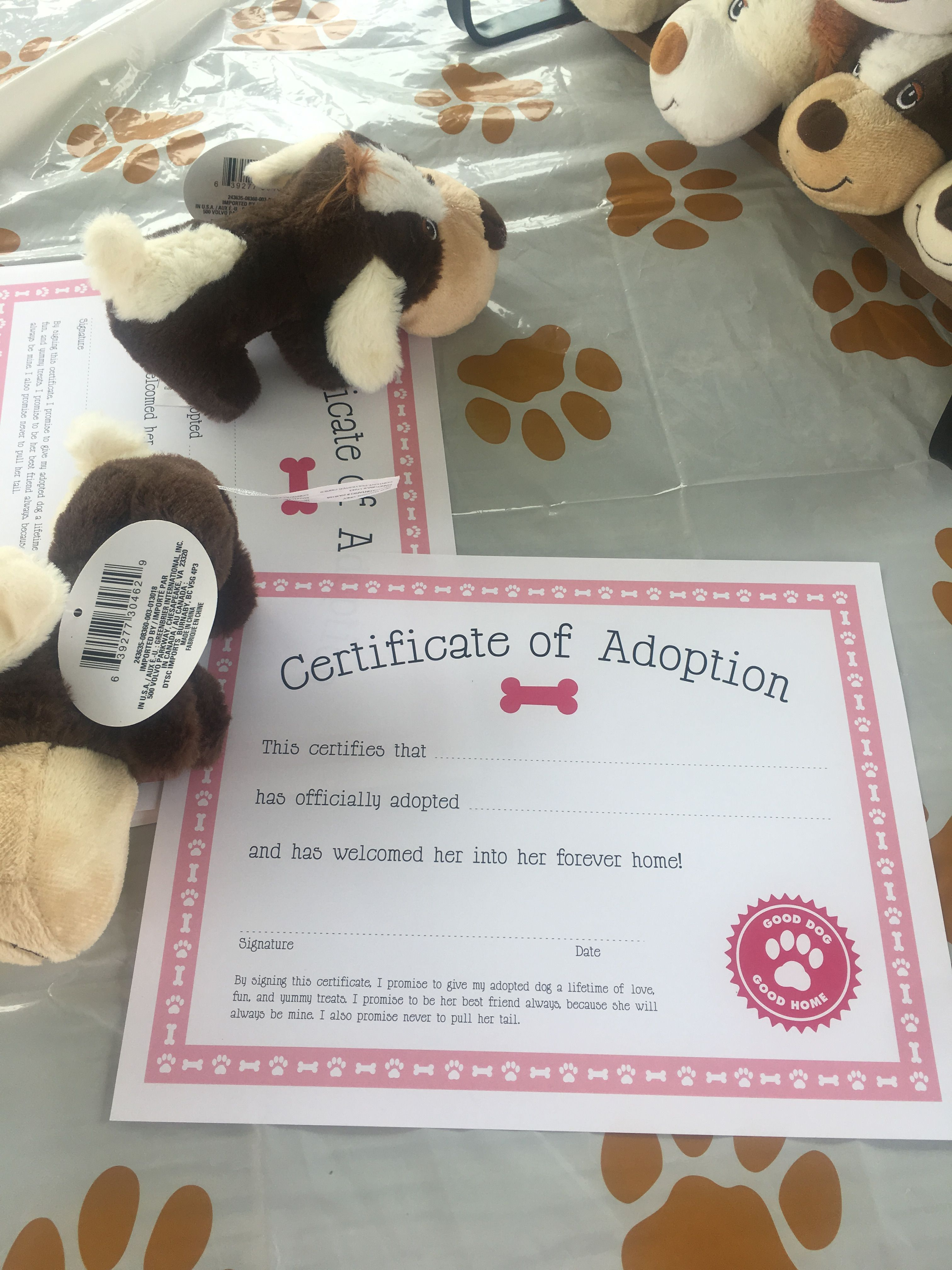Pin by Katie Bissinger on Abigail's 1st puppy picnic