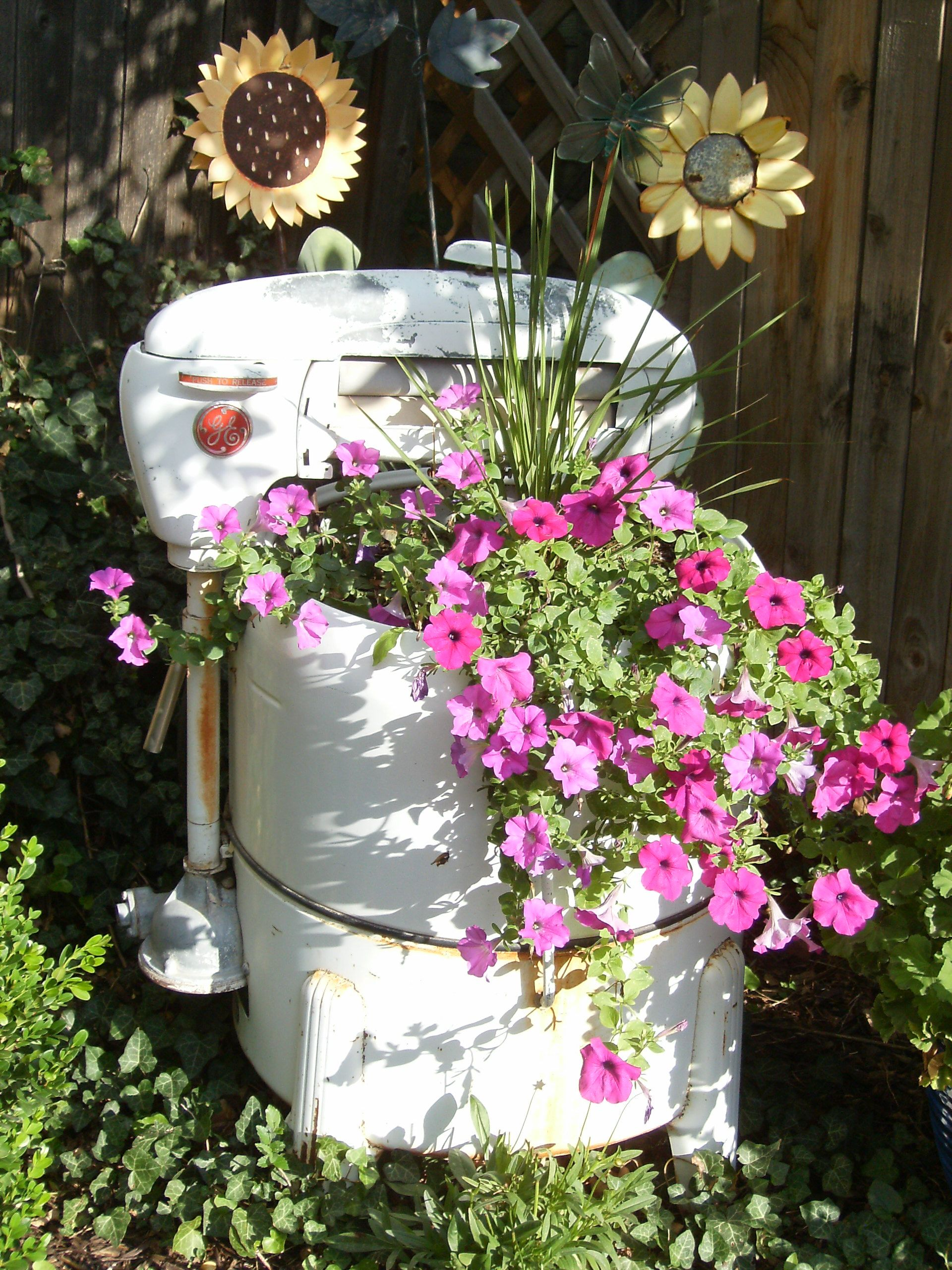 Got this old washing machine for a steel at an estate sale and  filled with wave petunias