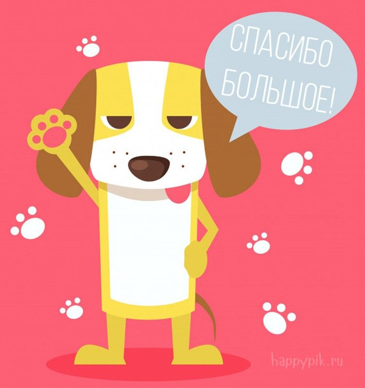 Картинки, картинки спасибо собаки