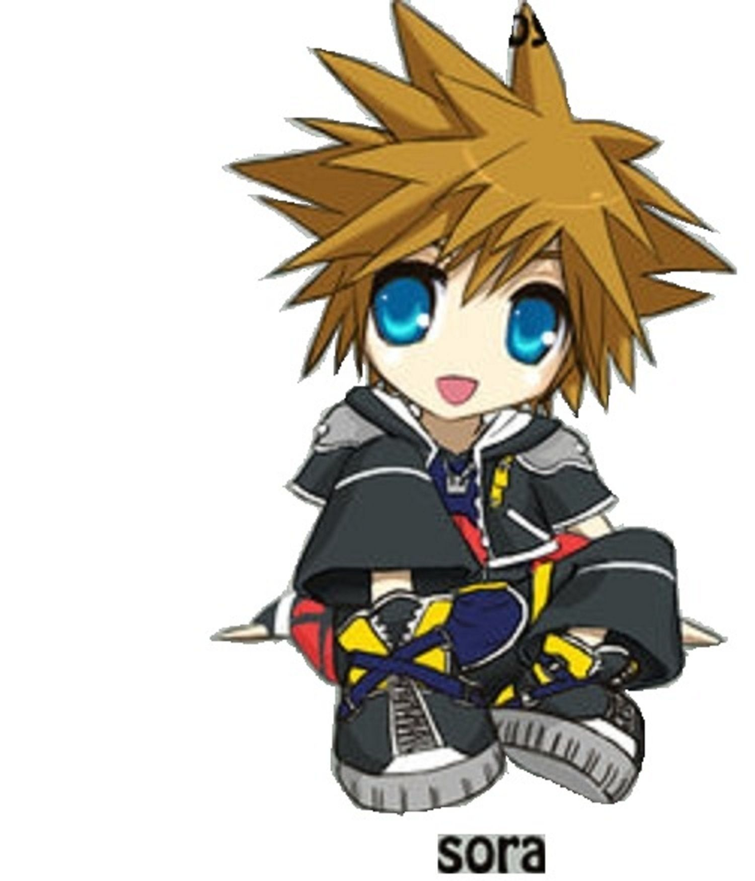 Sora Kingdom Hearts, Kingdom Hearts