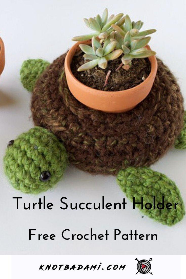 World Turtle Succulent Holder – Knot Bad
