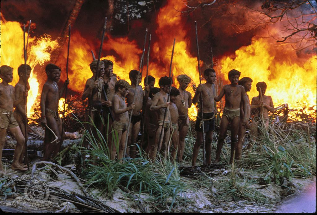 lord of the flies rescue actual image o lord of the flies  lord of the flies rescue actual image o