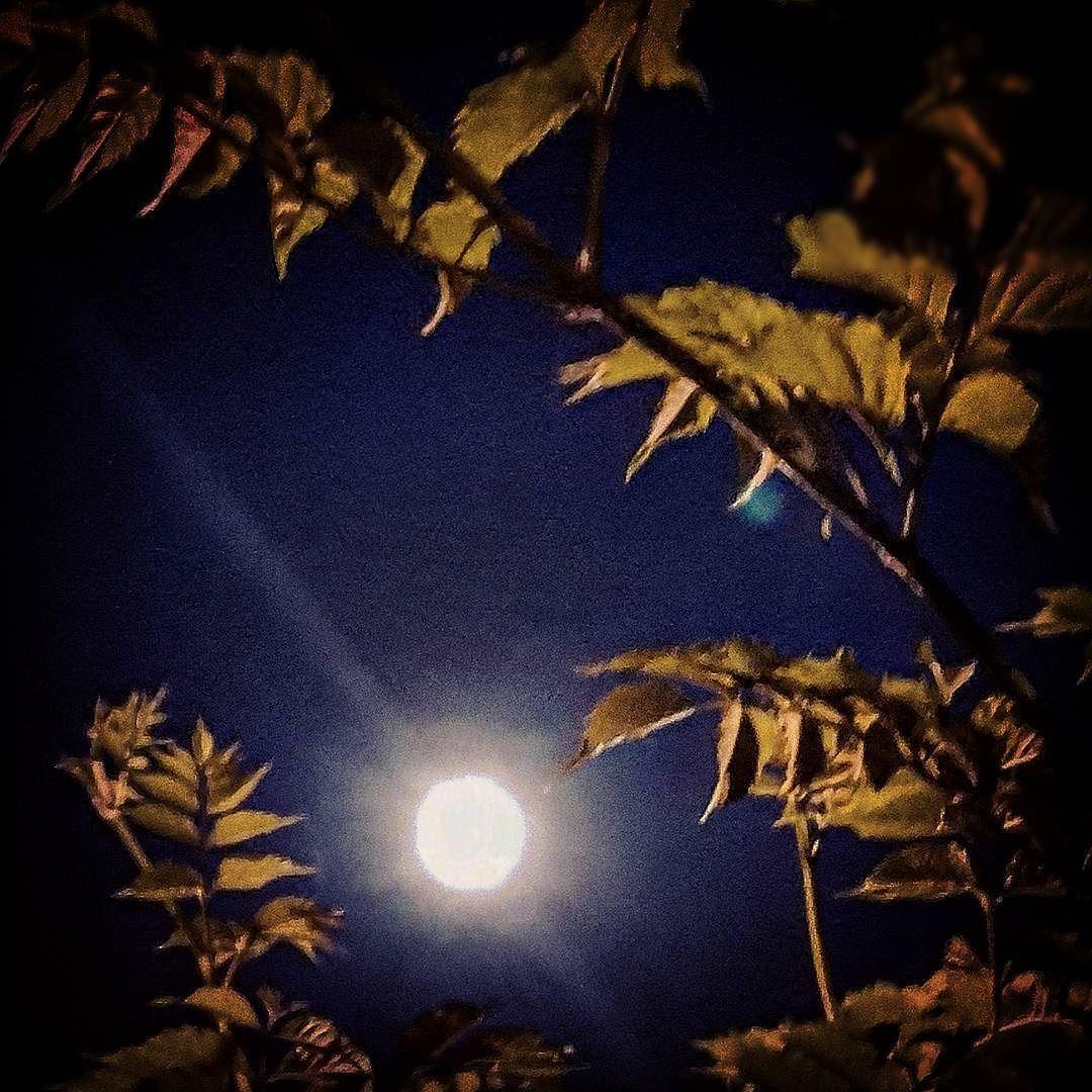 Sanırım telefonla çektiğim en güzel ay fotoğrafı  #gece #ay #gökyüzü #huzur #night #moon #sky #peace by ozanozlem