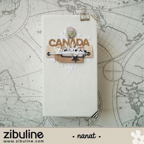 """lescrapananat: DT Zibuline , Mini album """"CANADA"""""""