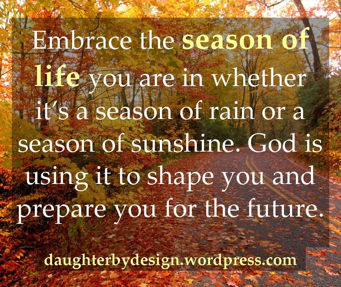 Image result for embrace the season