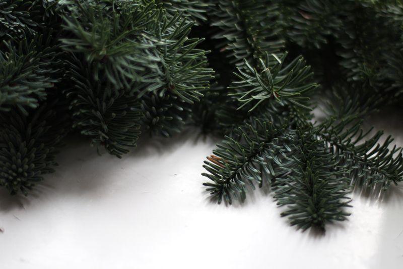 RAW Design blog: RAW CHRISTMAS TIPS COMING
