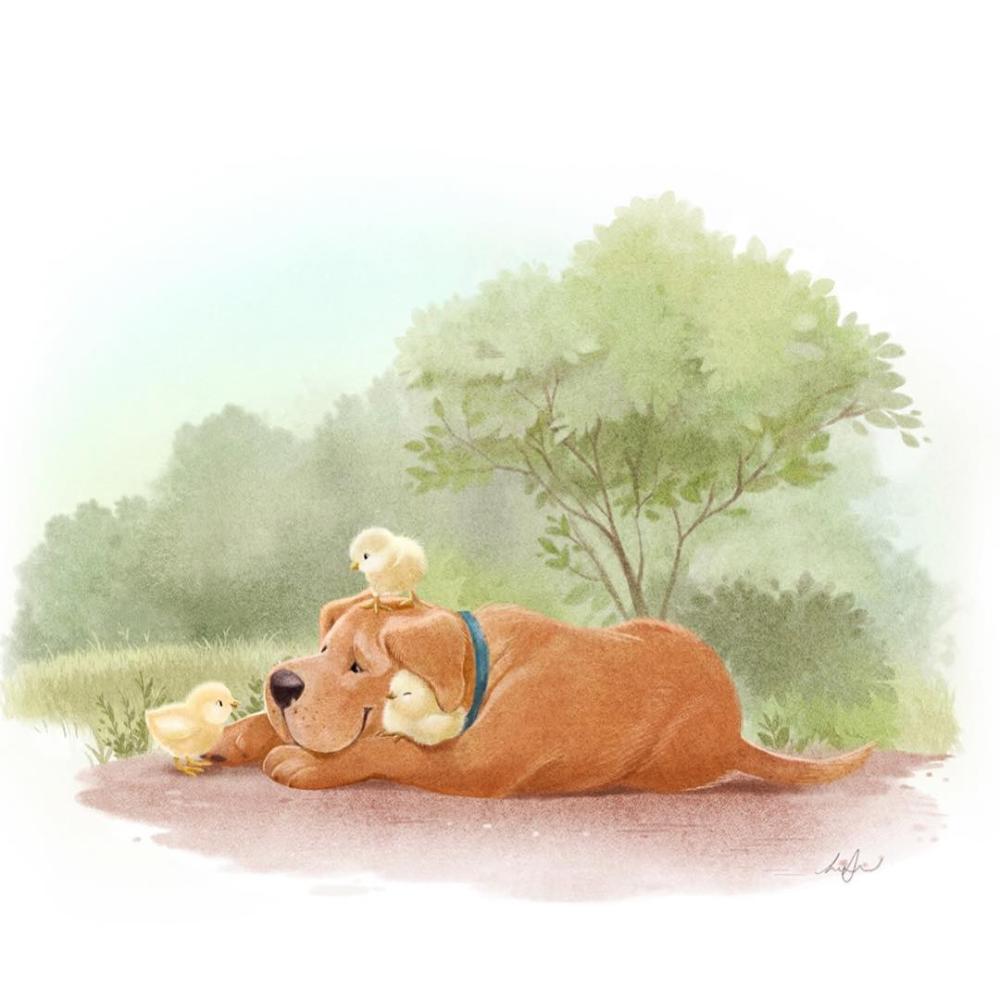 Сообщения | Милые рисунки, Иллюстрации, Рисунки животных