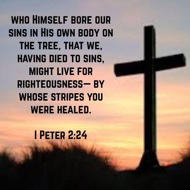 I Peter 2:24, New King James Version (NKJV) | 1 peter, Nkjv, New king james  version