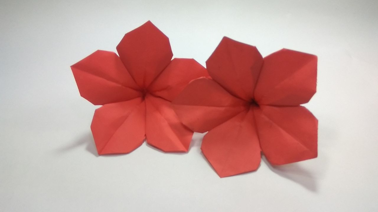 How To Make An Origami Petunia Flower Tutorial Clare Origami