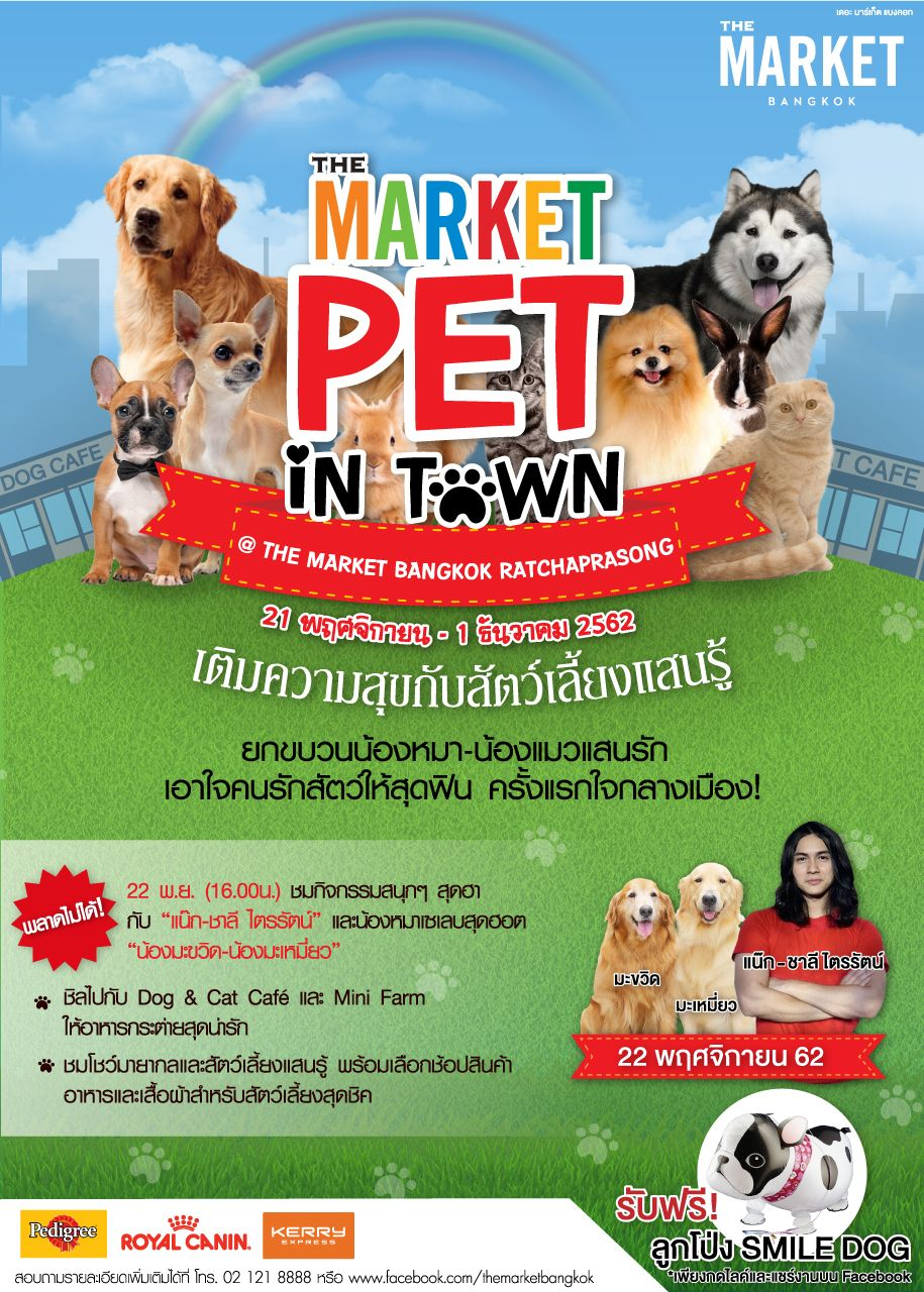 Poster Design The Market Pet In Town