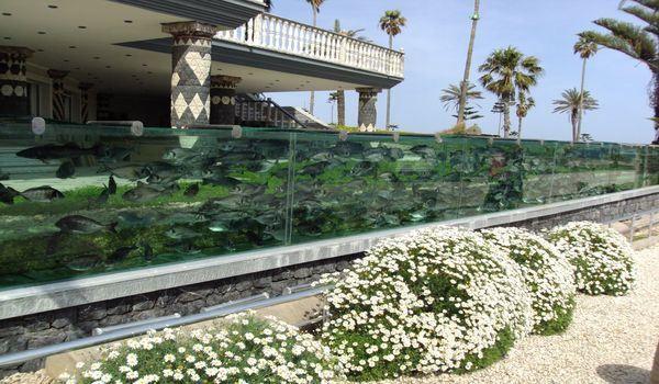 необычный аквариум в турции