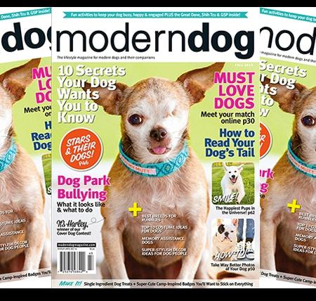 Modern Dog Magazine With Images Modern Dog Magazine Dog Magazine Modern Dog