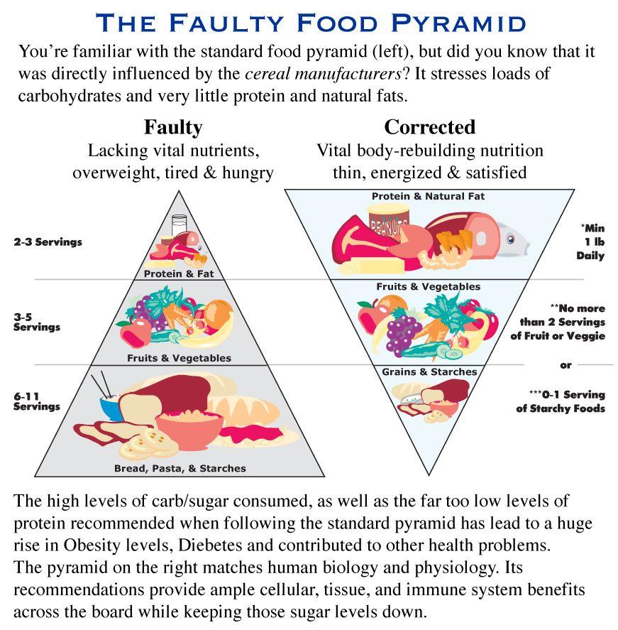 Faulty food pyramidrepin bypinterest for ipad food