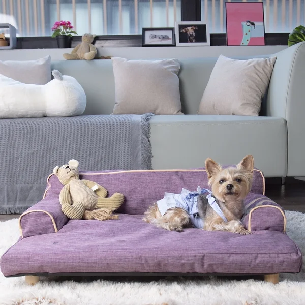 Overstock Com Online Shopping Bedding Furniture Electronics Jewelry Clothing More In 2021 Dog Sofa Unique Dog Beds Dog Sofa Bed