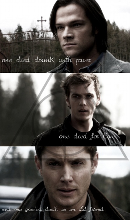 This would be great but in my opinion Adam as Michael's vessal died for power, Dean died for to save his little brother, Sammy therefore he died for love and Sam died to save the world and knew his death was the only way to do so, he was the one who jumped into the pit and greeted death like an old friend :)