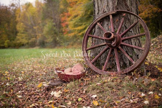 Instant Download Photography Prop Autumn Blessings DIGITAL BACKDROP for Photographers #backdropsforphotographs